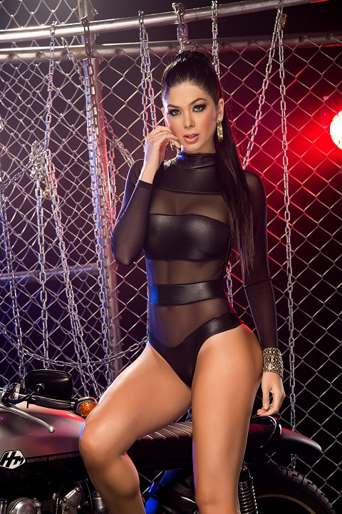 Black Sheer Mesh Banded Bodysuit